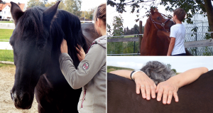 Pferdegestützte Persönlichkeitsentwicklung mit Almut Burmeister